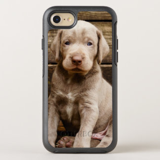 Slovakian Rough Haired Pointer Puppies OtterBox Symmetry iPhone 7 Case