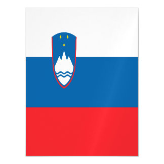 Slovenia Flag Magnetic Card