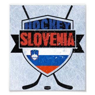 Slovenia Ice Hockey Shield Photograph