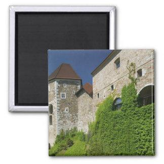 SLOVENIA, Ljubljana: Castle Hill / Ljubljana Magnet