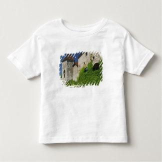 SLOVENIA, Ljubljana: Castle Hill / Ljubljana Toddler T-shirt