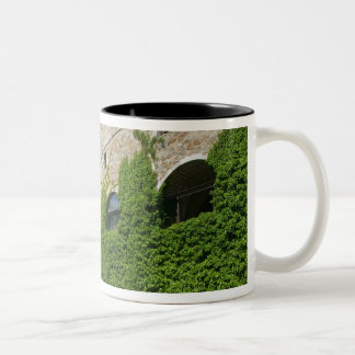 SLOVENIA, Ljubljana: Castle Hill / Ljubljana Two-Tone Coffee Mug