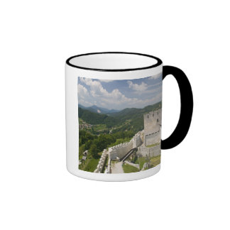 SLOVENIA, STAJERSKA Styria), Celje: Town View Ringer Coffee Mug