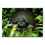 Slow Commando - Army Turtle
