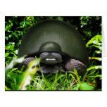 Slow Commando - Army Turtle Greeting Card