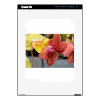 Slow Dance iPad 3 Decal