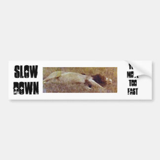 Slow Dow, You Move Too Fast Car Bumper Sticker