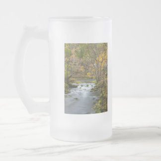 Slow Down At Alley Frosted Glass Beer Mug