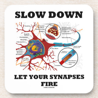 Slow Down Let Your Synapses Fire Neuron Synapse Coaster
