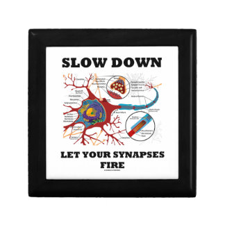 Slow Down Let Your Synapses Fire Neuron / Synapse Jewelry Box
