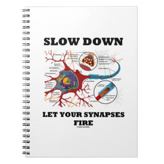 Slow Down Let Your Synapses Fire Neuron / Synapse Spiral Notebook