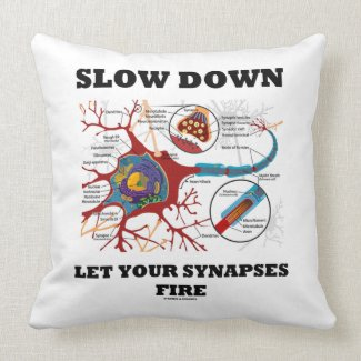 Slow Down Let Your Synapses Fire Neuron / Synapse Pillows