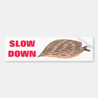 Slow Down Slug Bumper Sticker