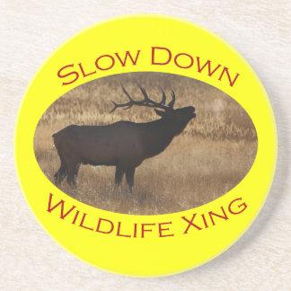 Slow Down Wildlife Crossing Beverage Coasters