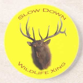 Slow Down Wildlife Crossing Beverage Coaster