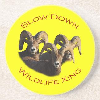 Slow Down Wildlife Crossing Drink Coaster