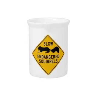 Slow Endangered Squirrels, Warning Sign, Maryland Beverage Pitcher