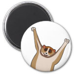 Slow Loris Tickle 1 2 Inch Round Magnet