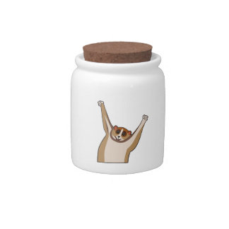Slow Loris Tickle 1 Candy Jar