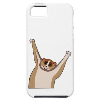Slow Loris Tickle 1 iPhone 5 Case