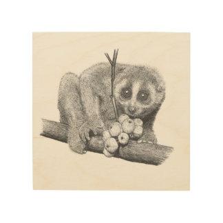 Slow Loris Wood Print