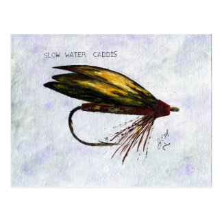 Slow Water Caddis  in Oil Postcard