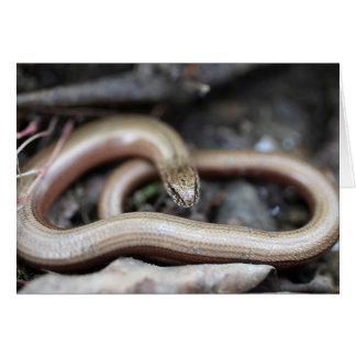 slowworm tarjeta de felicitación
