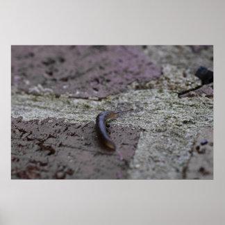 slug-2012-05-26 poster