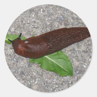 Slug Classic Round Sticker