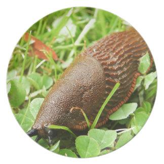 Slug Dinner Plate