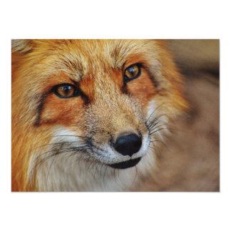 Sly Fox Card