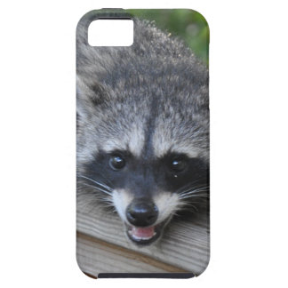 Sly Raccoon on Iphone Case