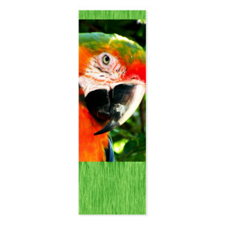Sm. Scarlet Macaw Green Bookmark Double-Sided Mini Business Cards (Pack Of 20)