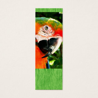 Sm. Scarlet Macaw Green Bookmark Mini Business Card