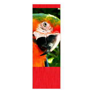 Sm. Scarlet Macaw Red Bookmark Double-Sided Mini Business Cards (Pack Of 20)