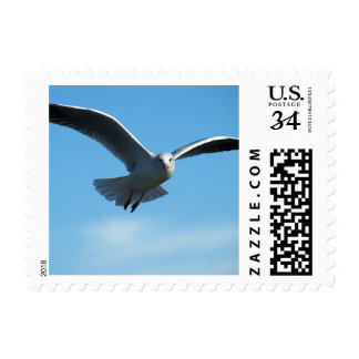 """Small, 1.8"""" x 1.3"""", $0.34 (Post Card) Postage"""