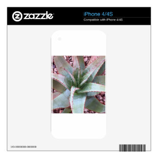 Small agave iPhone 4S skins