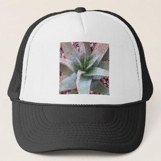 Small agave trucker hat