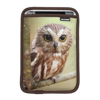 Small Baby Owl (Ontarios) iPad Mini Sleeves
