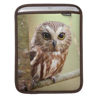 Small Baby Owl (Ontarios) iPad Sleeve