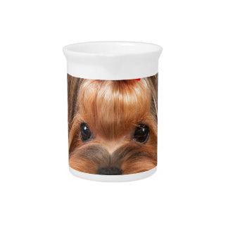 Small beauty pitcher