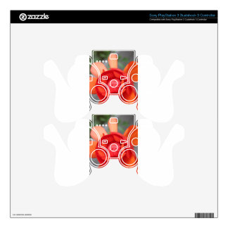 Small Begonia Decal For PS3 Controller