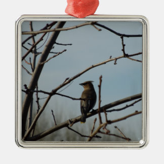 Small Bird in Bare Tree in Winter Christmas Ornaments