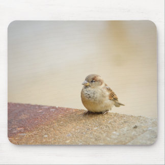 Small Bird Mouse Pad