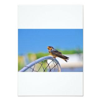 Small bird on a net 5x7 paper invitation card