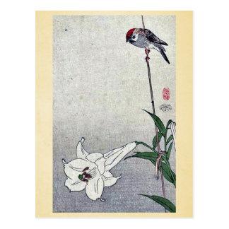 Small bird on lily plant by Baison, Ukiyoe Postcard