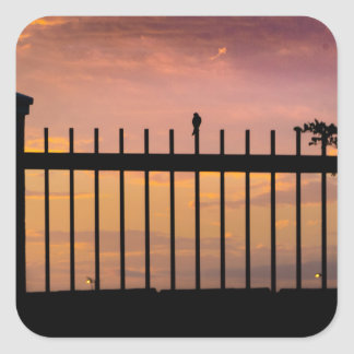 Small Bird Over Fence Backlight Sunset Scene Square Sticker