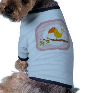 small bird pet clothes