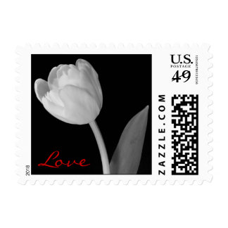 Small Black and white Tulip, Love Postage Stamp