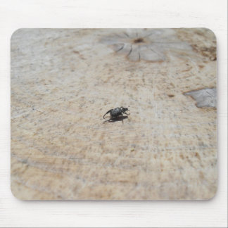Small Black Beatle On Tree Stump Mouse Pads